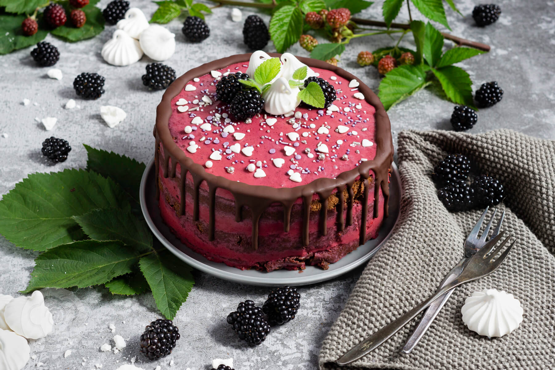 Read more about the article Brombeer Torte mit Schokolade